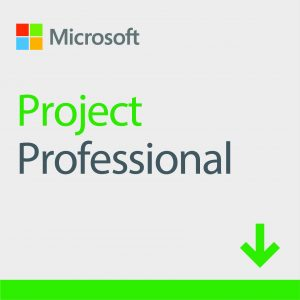 ESD Microsoft Project Professional 2019 Win All Lng Online Product Key